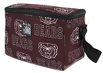 Missouri State Insulated Lunch Box Coolers