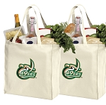 UNCC Shopping Bags University of North Carolina Charlotte Grocery Bags 2 PC SET